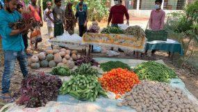 ফেঞ্চুগঞ্জে দরিদ্রদের মধ্যে হাবিবুর রহমান হাবিবের সবজি ও মাছ বিতরণ